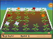 Igra Cvijeće Memory Igrica - Igrice Memori Igre za Djecu