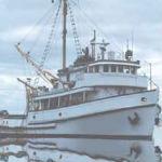 Pecanje Na Moru – Igre Ribolov
