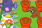Uzgoj Cvijeća u Vrtu – Dora istražuje